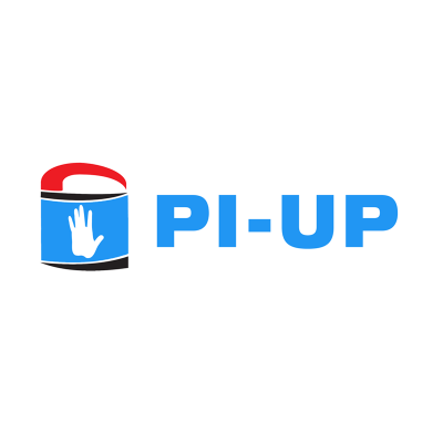 pi-up copias de seguridad online